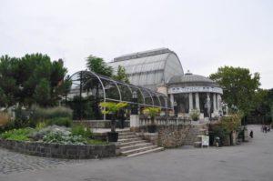 Üvegház pálmaház Budapesten